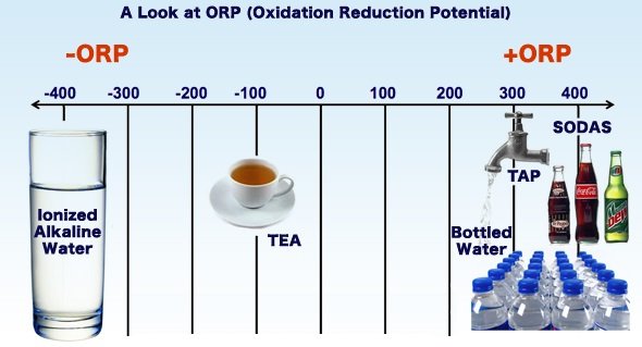 oxidative reduction potential