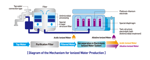 how a water ionizer works